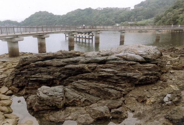 大きな海の岩が面白い