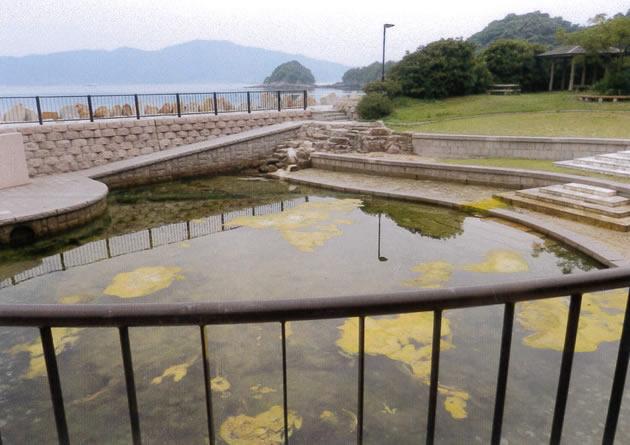 海水の干満により水位が変わるタイドプール