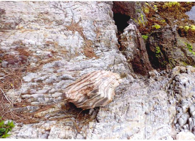 花崗片麻岩(長石、石英、黒雲母)