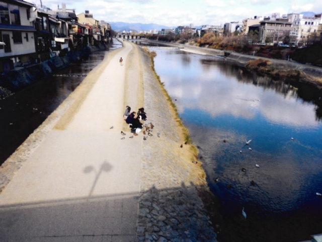 四条大橋から見た鴨川 観光客が鴨にエサをやっている