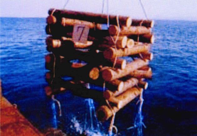 木材の魚礁