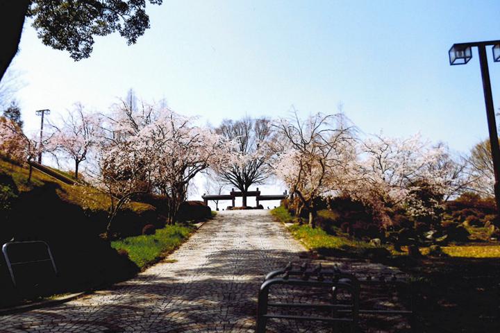 下松港が見える公園