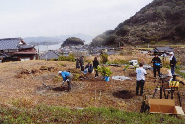 深浦の海が見える放棄田んぼに植える