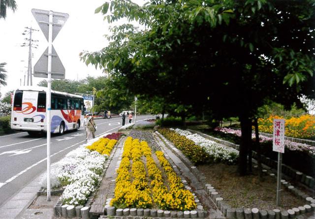 大城入口シャトルバス運行