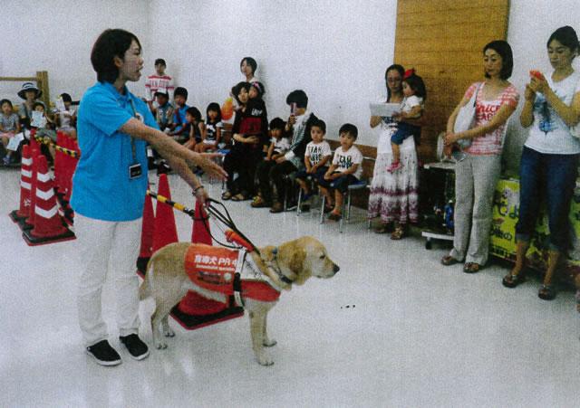 盲導犬と遊ぶ