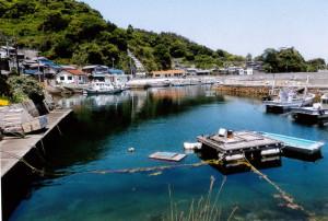 島の中心、本浦港
