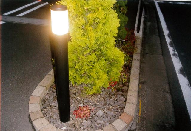 道路脇の花壇の中のソーラーライト